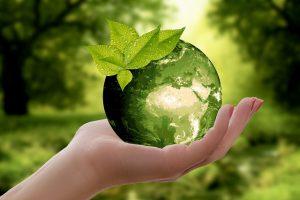 ¿Cómo hacer una oficina corporativa más sustentable?